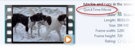 04-win7-quicktime-movie-support.png