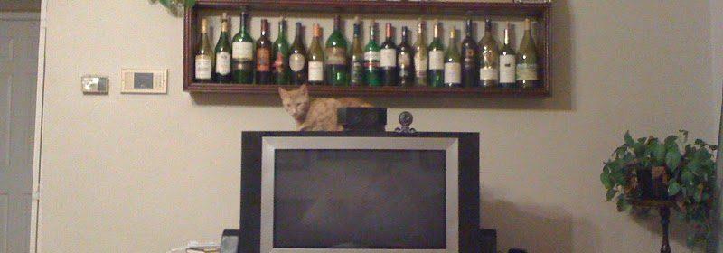 Hobo on top of TV.JPG